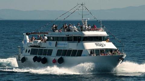 Sailing Tuscan Archipelago