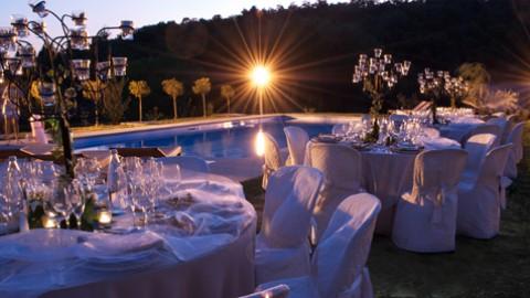 Olive green wedding