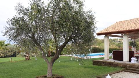 Villa Carpineti