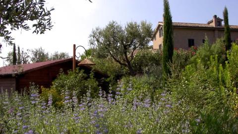 Villa dei Glicini